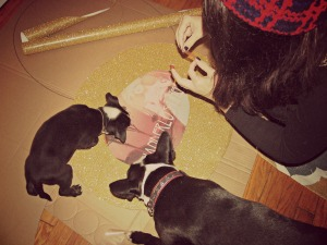 Caitlin working on her sign with help from Butter and foster pup Apple