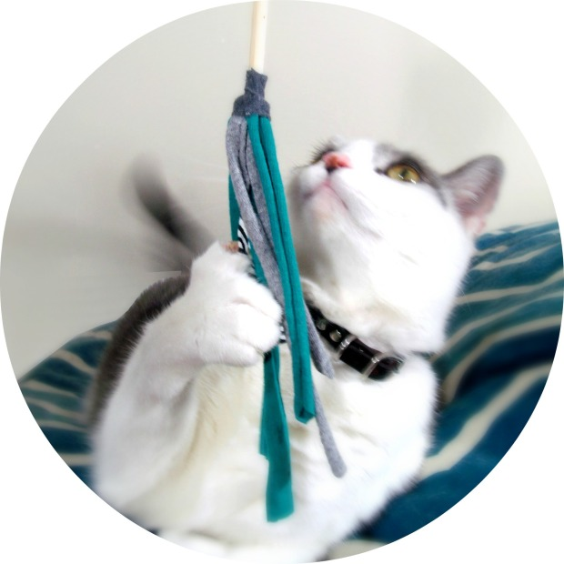 Peanut Loves Butter: Upcycled fabric cat teaser