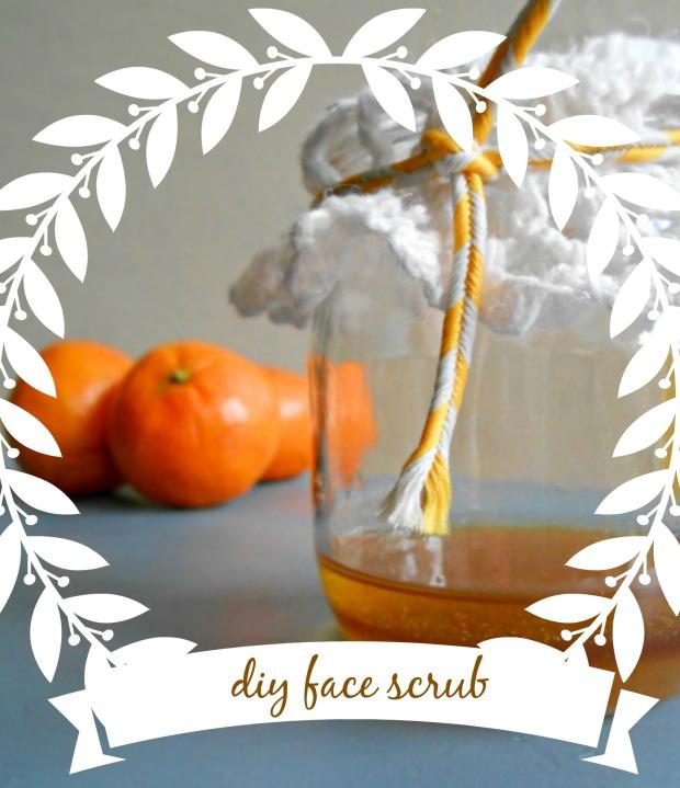 diy orange spice face scrub face scrub